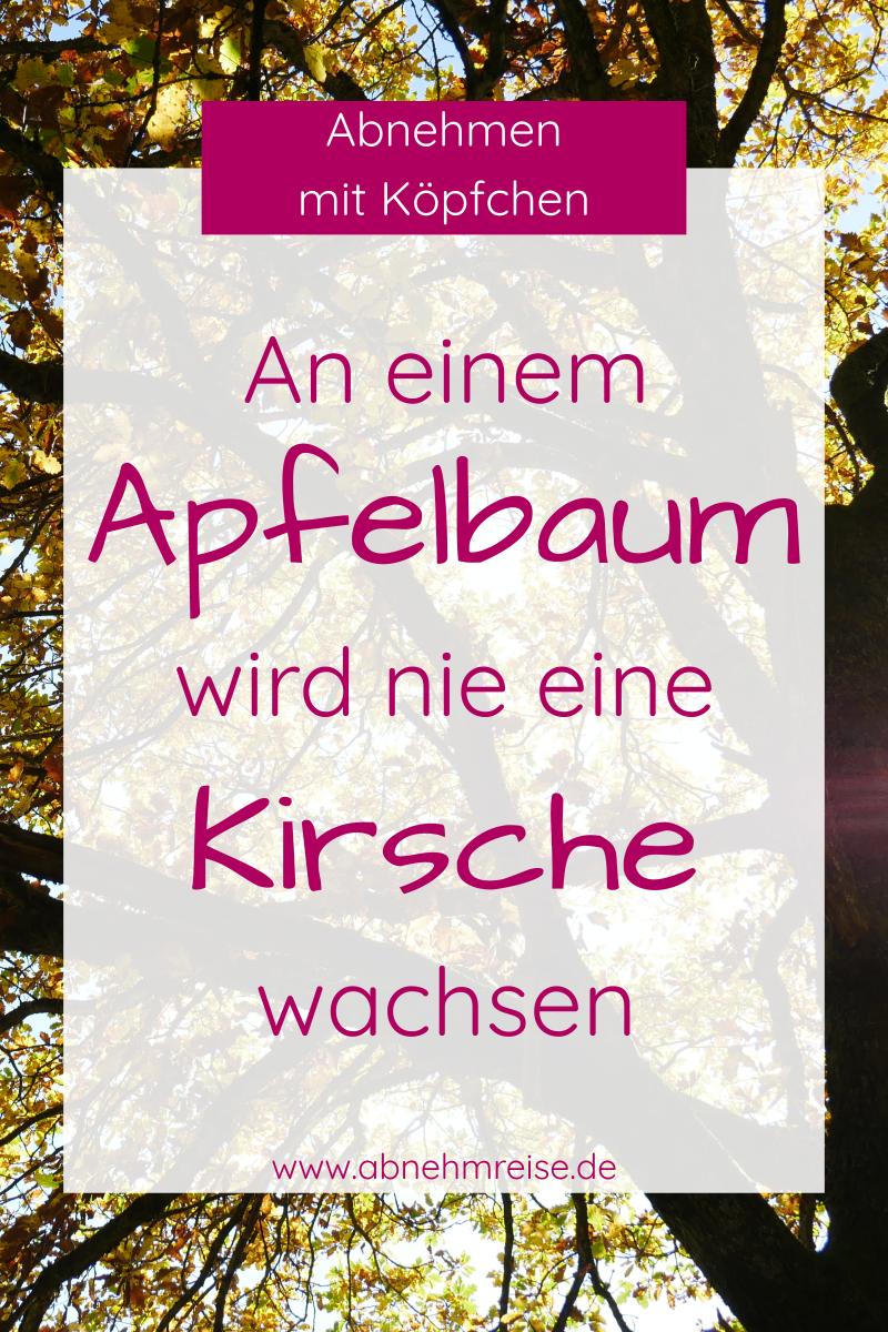 Bild: An einem Apfelbaum wird nie eine Kirsche wachsen!